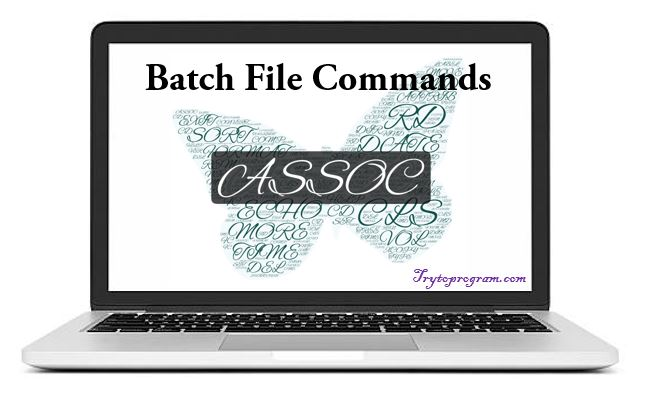 batch file command