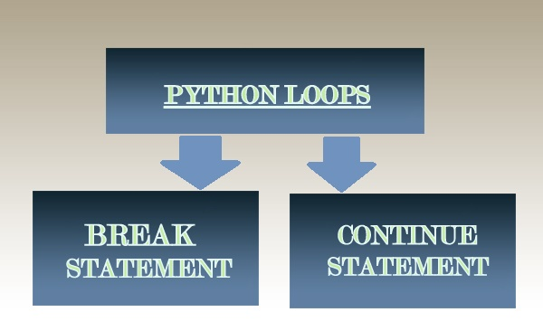 python break and continue statement
